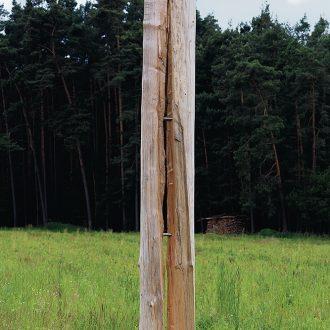Gespaltene Säule - Kiefer - 2010 - Höhe ca. 3,5 m - Kunstweg Barthelmesaurach