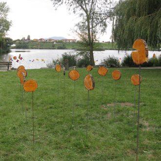 Couleurs d'Automne 2012 - Festivalsituation