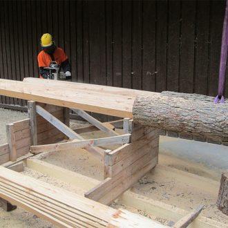 Drei Bäume - Vorbereitung