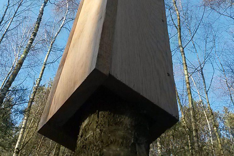 mit der Natur arbeiten - Balken und Brett